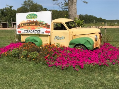 Fink's Farm